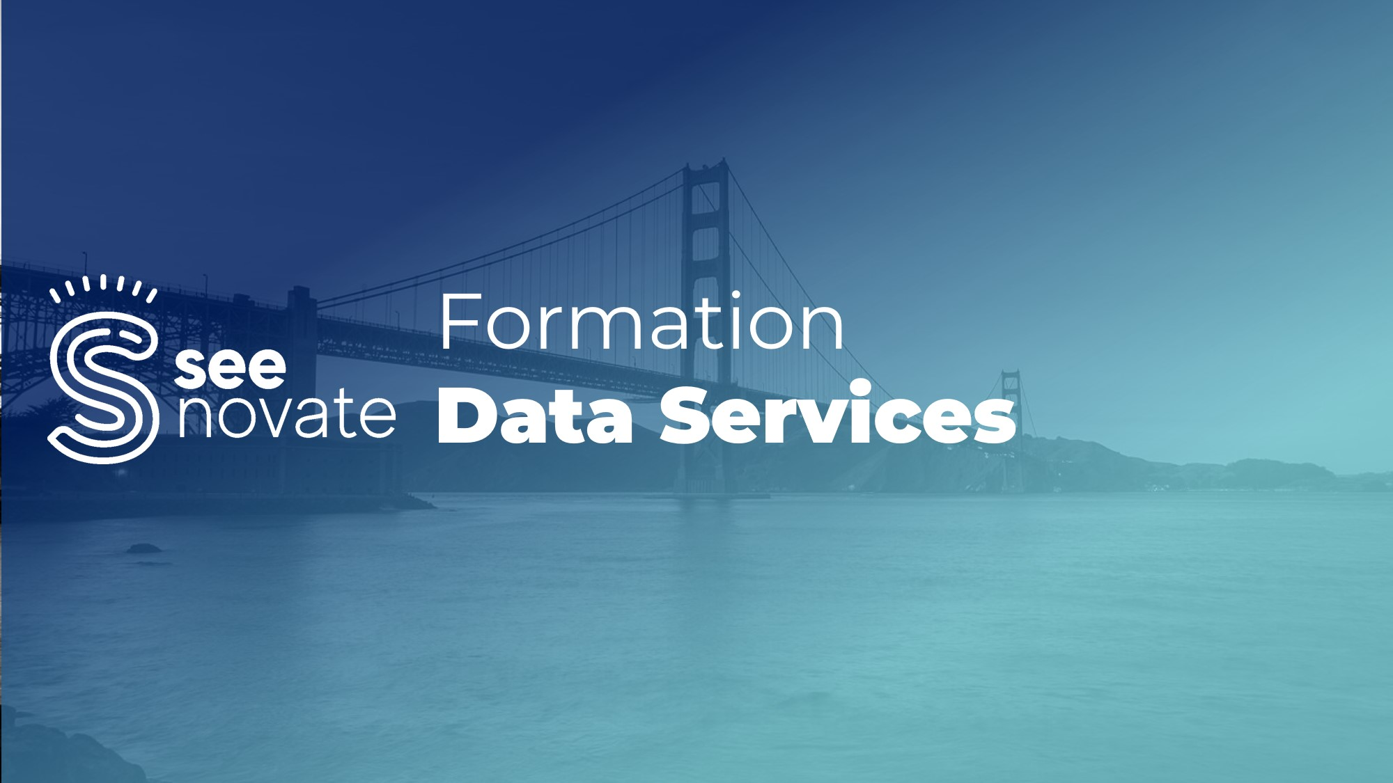 Formation SAP Data Services
