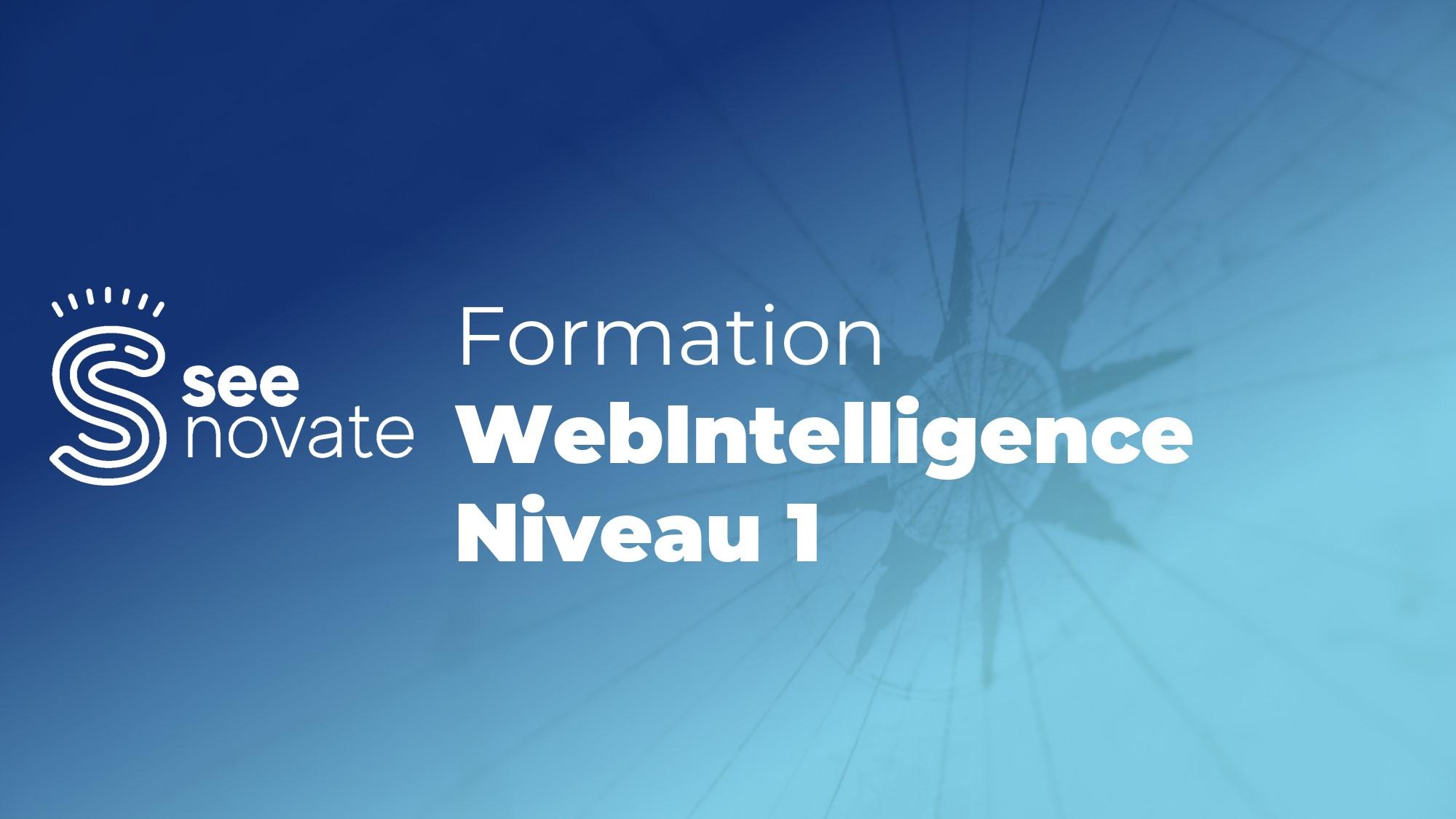 Formation Web Intelligence Niveau 1