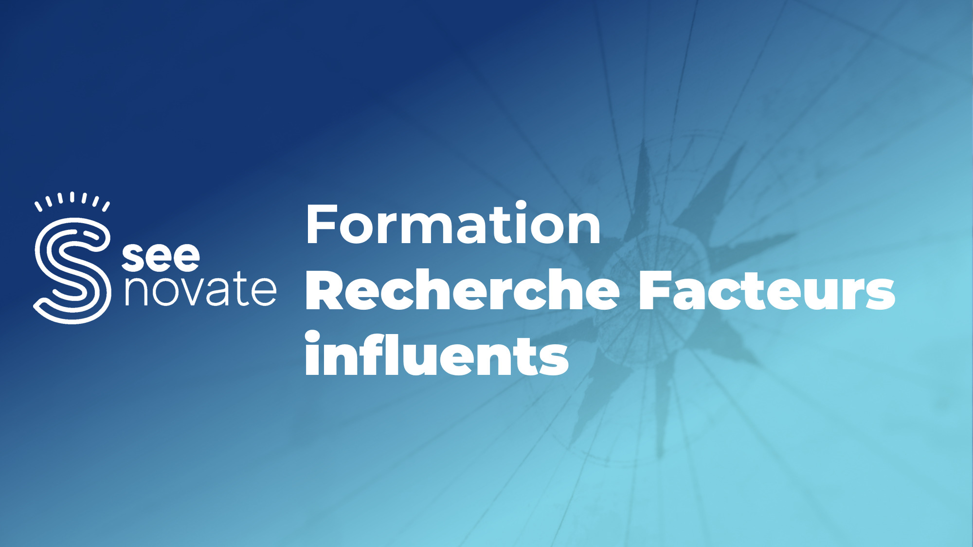 formation seenovate facteurs influents