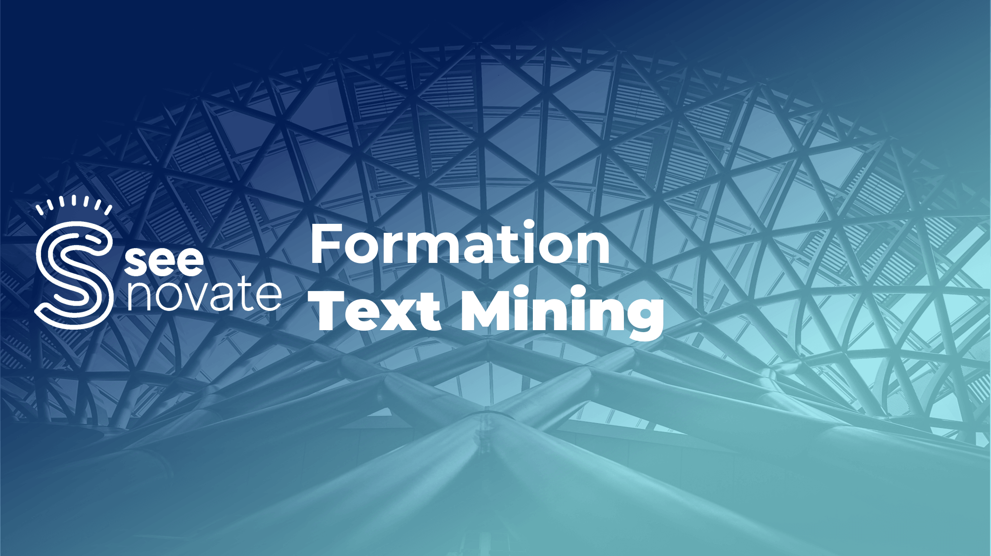 formation seenovate text mining
