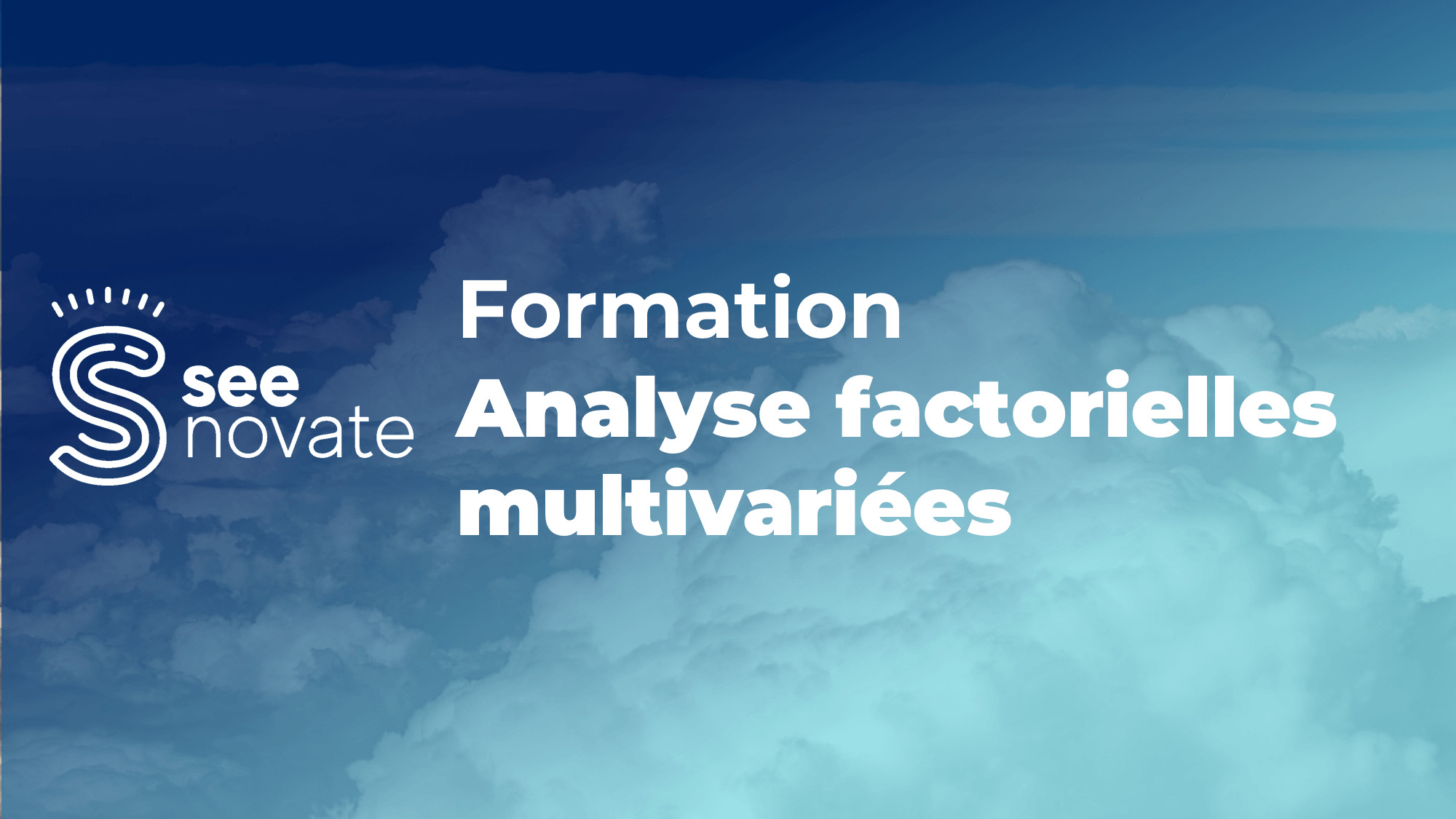 formation seenovate analyse factorielle